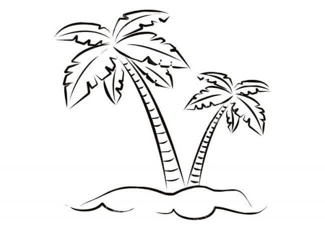 Langkah menggambar pohon kelapa